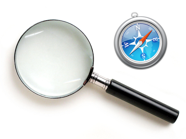 magnifier for safari