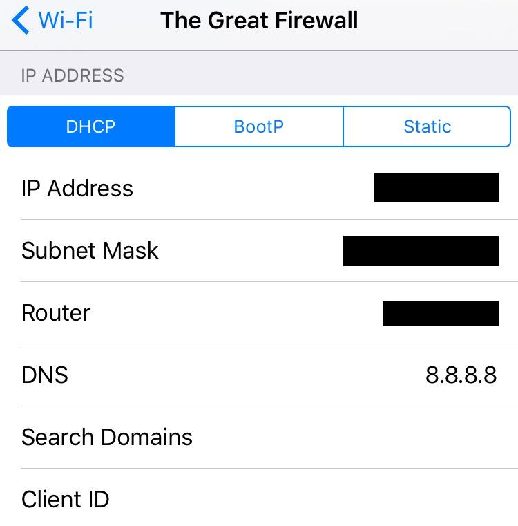 Change Wi-Fi DNS settings iOS