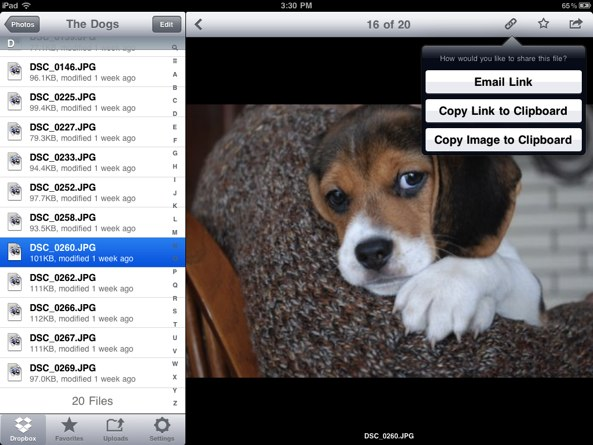 Dropbox for iOS (iPad screenshot 001)