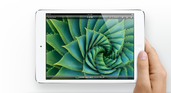 iPad mini (landscape, in hand, display)