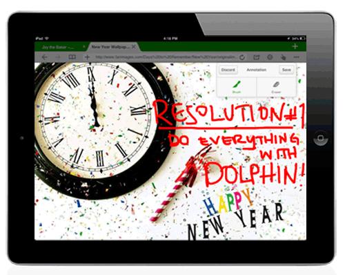 Dolphin 7.0 for iOS (iPad teaser)