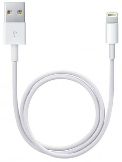 Apple 0.5 meter Lightning to USB cable