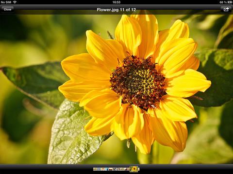 Files 1.0 for iOS (iPad screenshot 003)