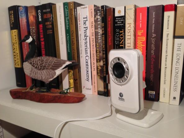 Swann Bookshelf