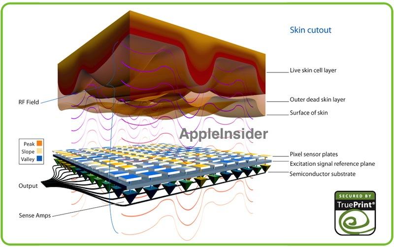 fingerprint-sensor-concept