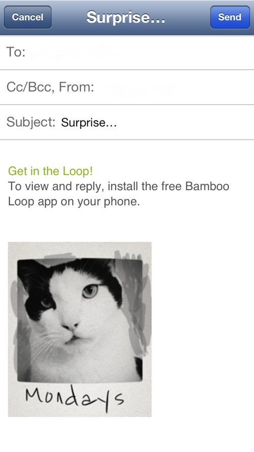 Bamboo Loop 3