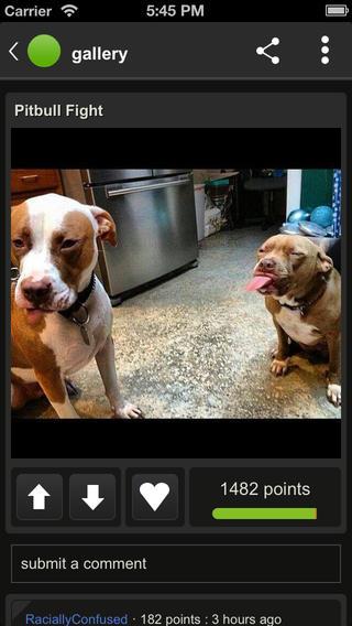 Imgur 1.0 for iOS (iPhone screenshot 002)