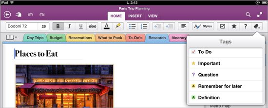 OneNote 2.0 for iOS (iPad screenshot 003)