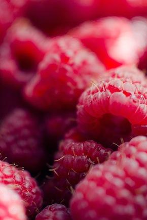 Marie Sturges Raspberry