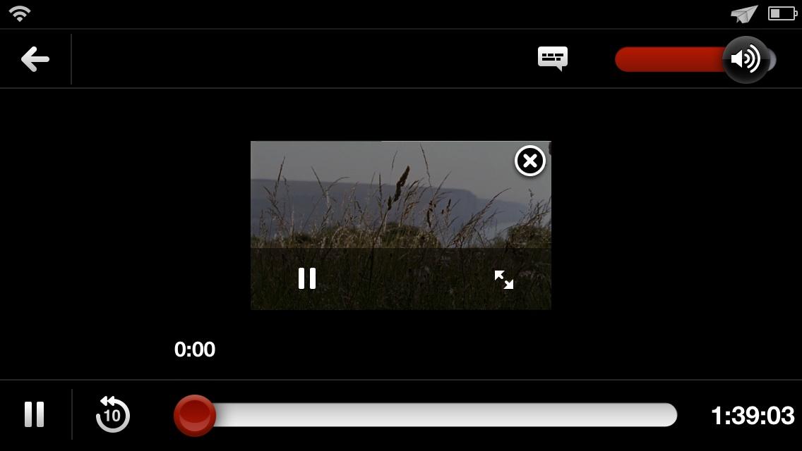 VideoPane Netflix