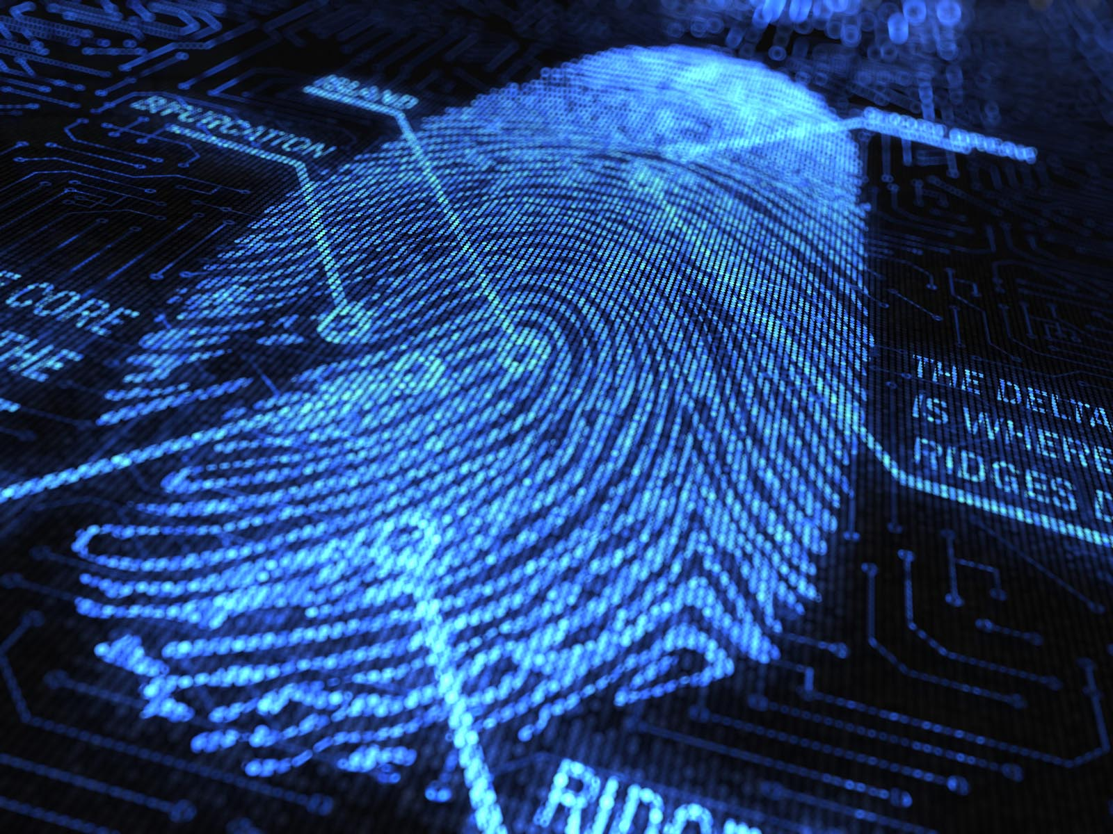 Rumor: Galaxy S5 to integrate fingerprint scanner into ...