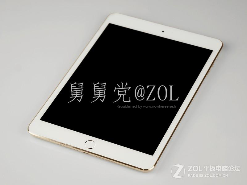 iPad-Mini-2-Or-001