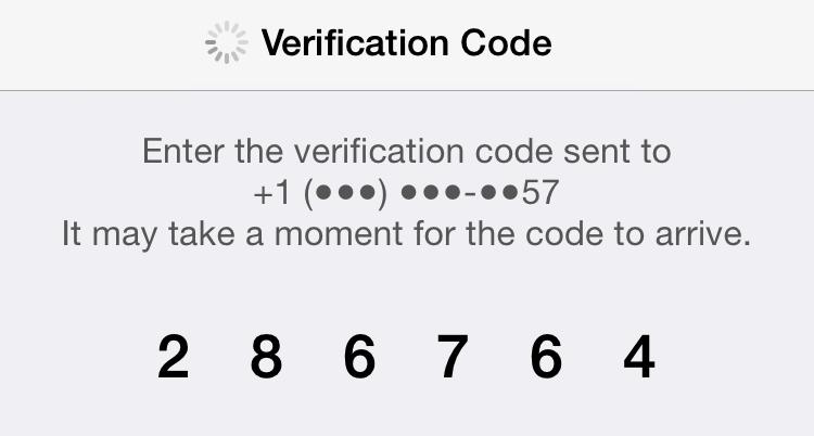 enter icloud verification code