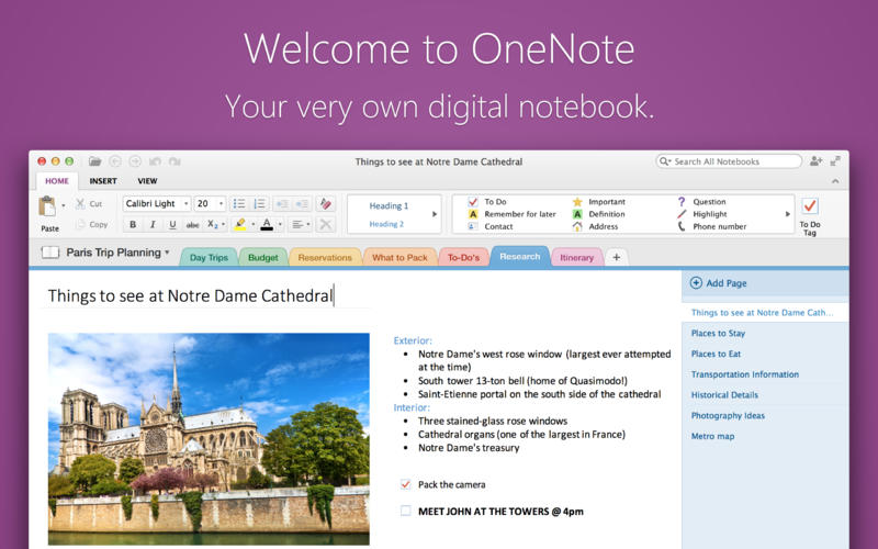 Microsoft OneNote 1.0 for Mac (screenshot 001)
