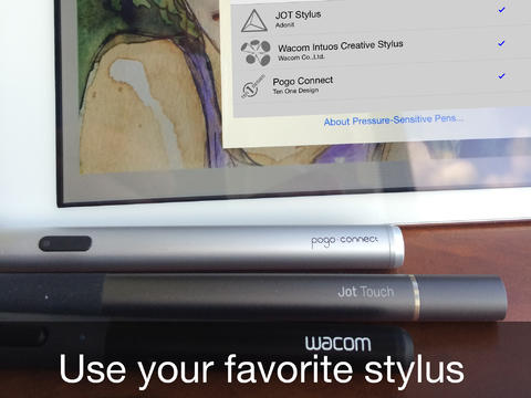 Air Stylus 1.0 para iOS (captura de pantalla 002 de iPhone)