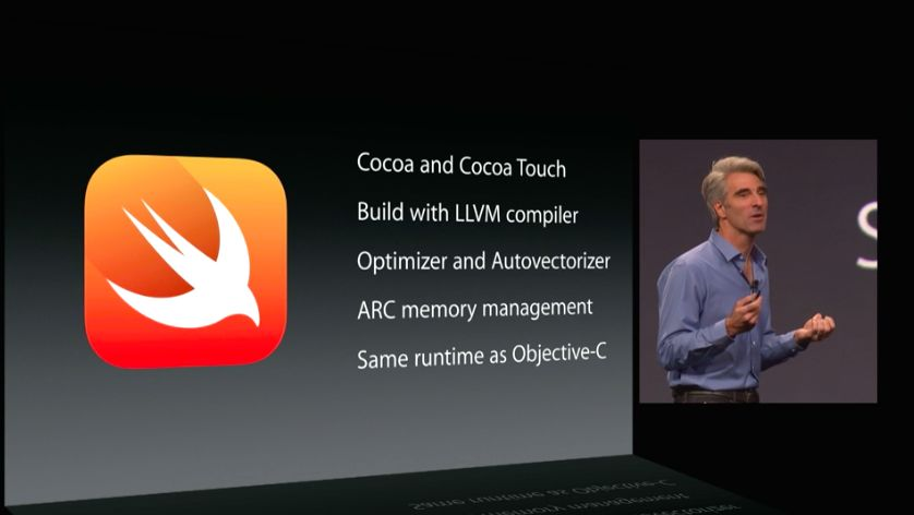 Apple Swift (image 001)