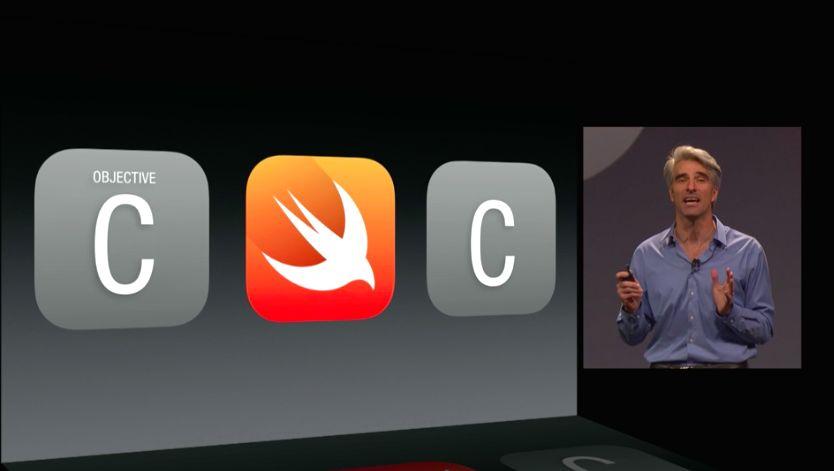 Apple Swift (image 002)