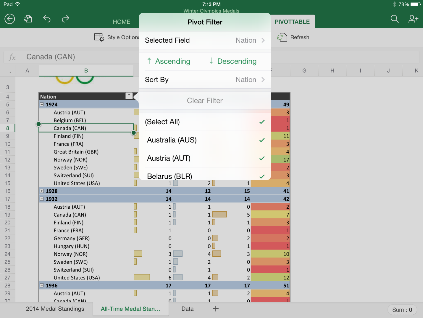Excel 1.1 for iiPad (PivotTable)