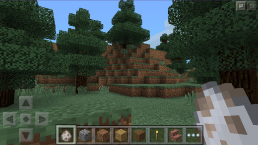 Minecraft - Pocket Edition 0.9.0 (iPhone screenshot 001)