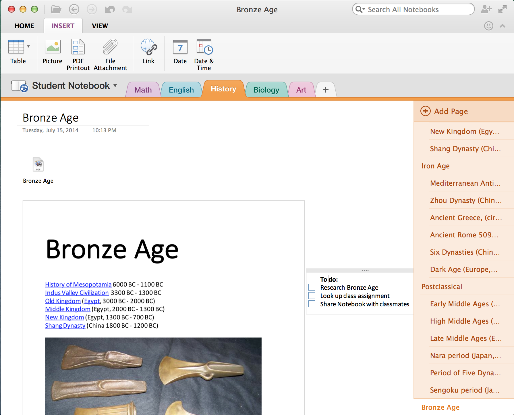 OneNote for Mac (PDF Printout)