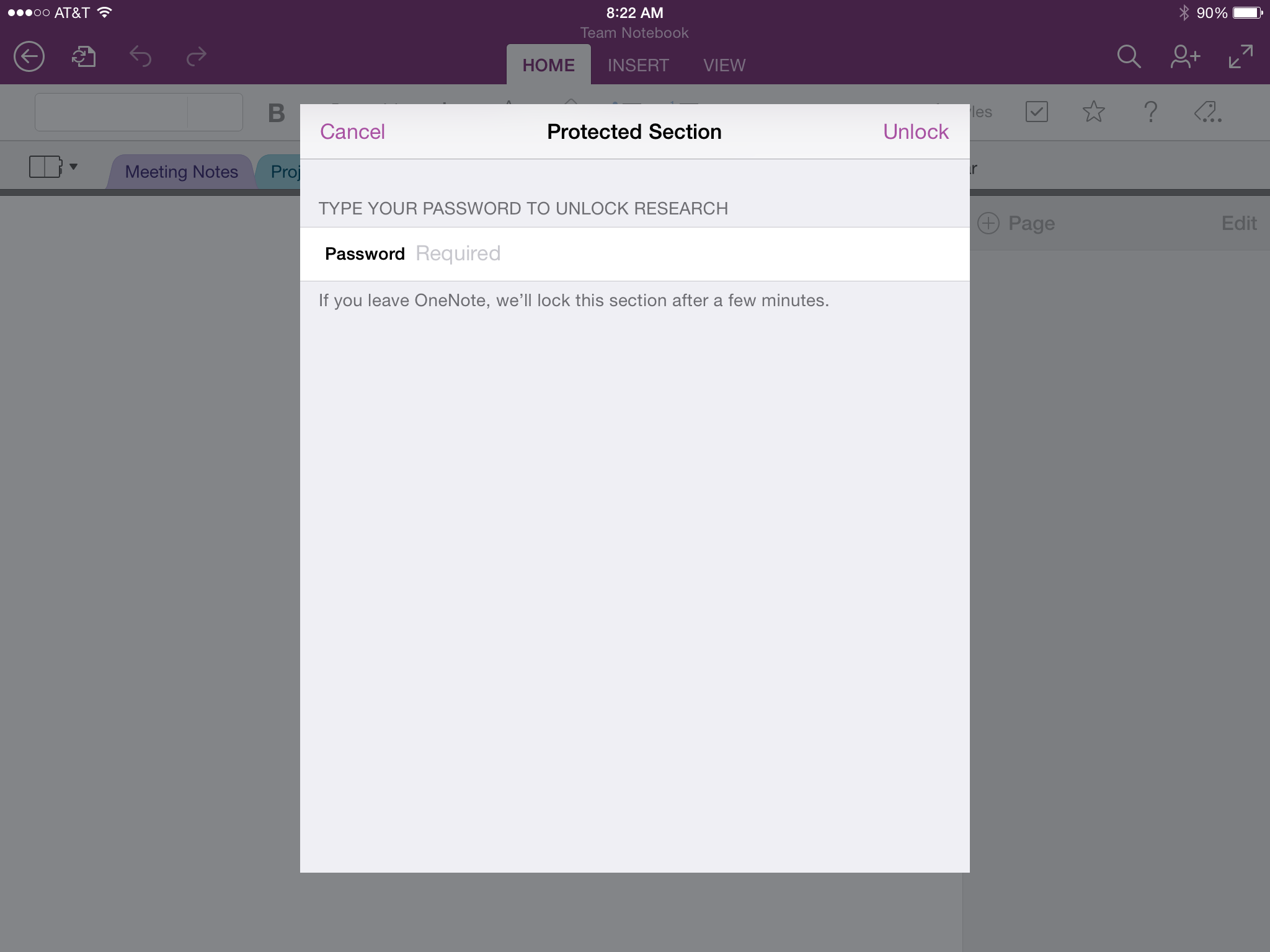OneNote for iPad (Password protected)