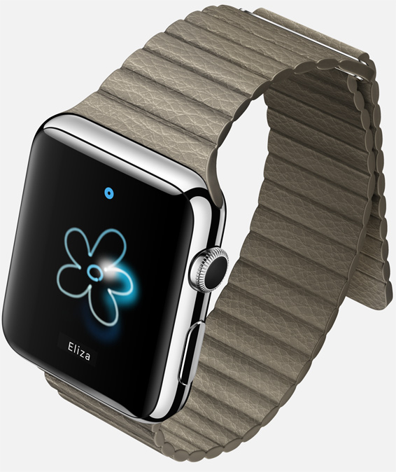 Apple Watch steel case stone leather loop