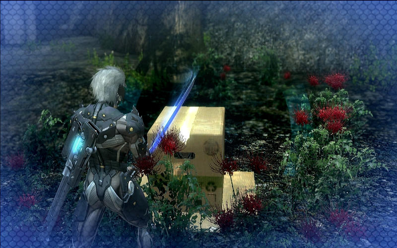 Metal Gear Rising - Revengeance (Mac screenshot 005)