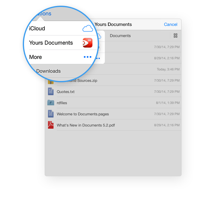 PDF Expert 5.2 for iOS (iCloud Drive 002)