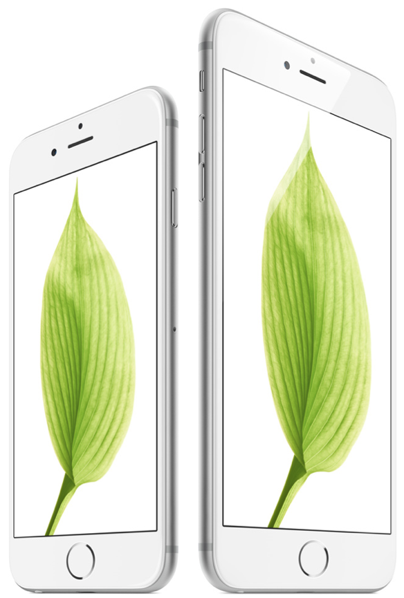 Silver iPhone 6 6 Plus side by side