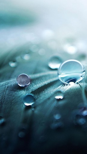 Water Drop Wallpaper iPhone 6 Plus preview