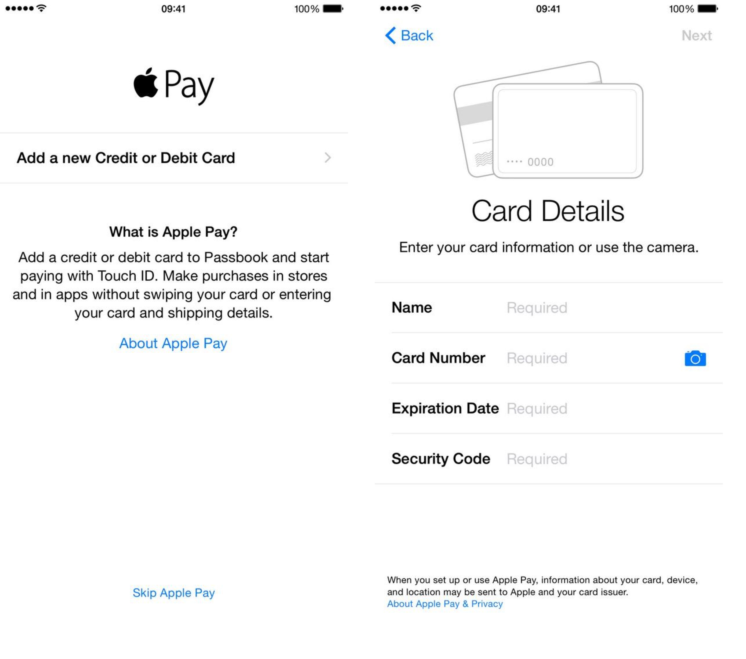 Apple Pay Credit Card Details Setup