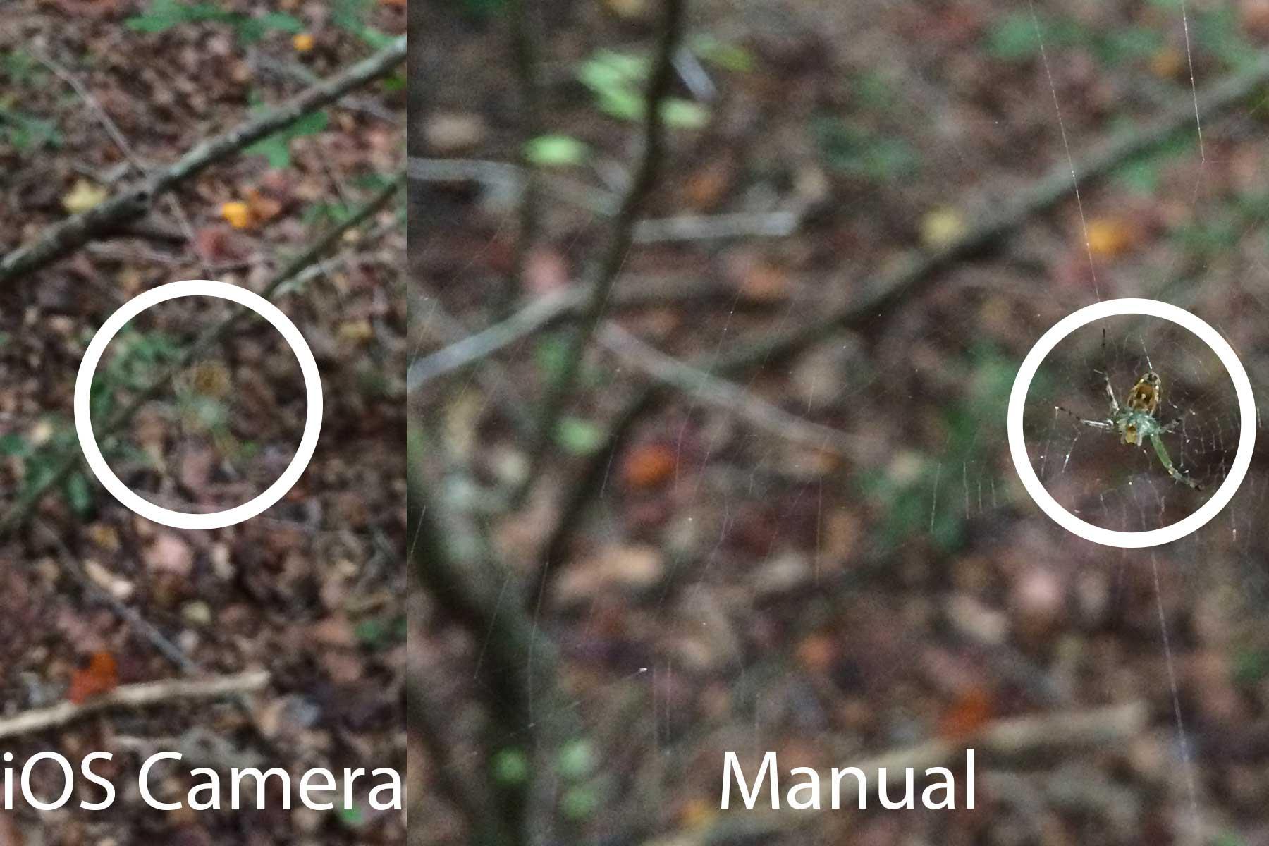 Manual-focus-spiders