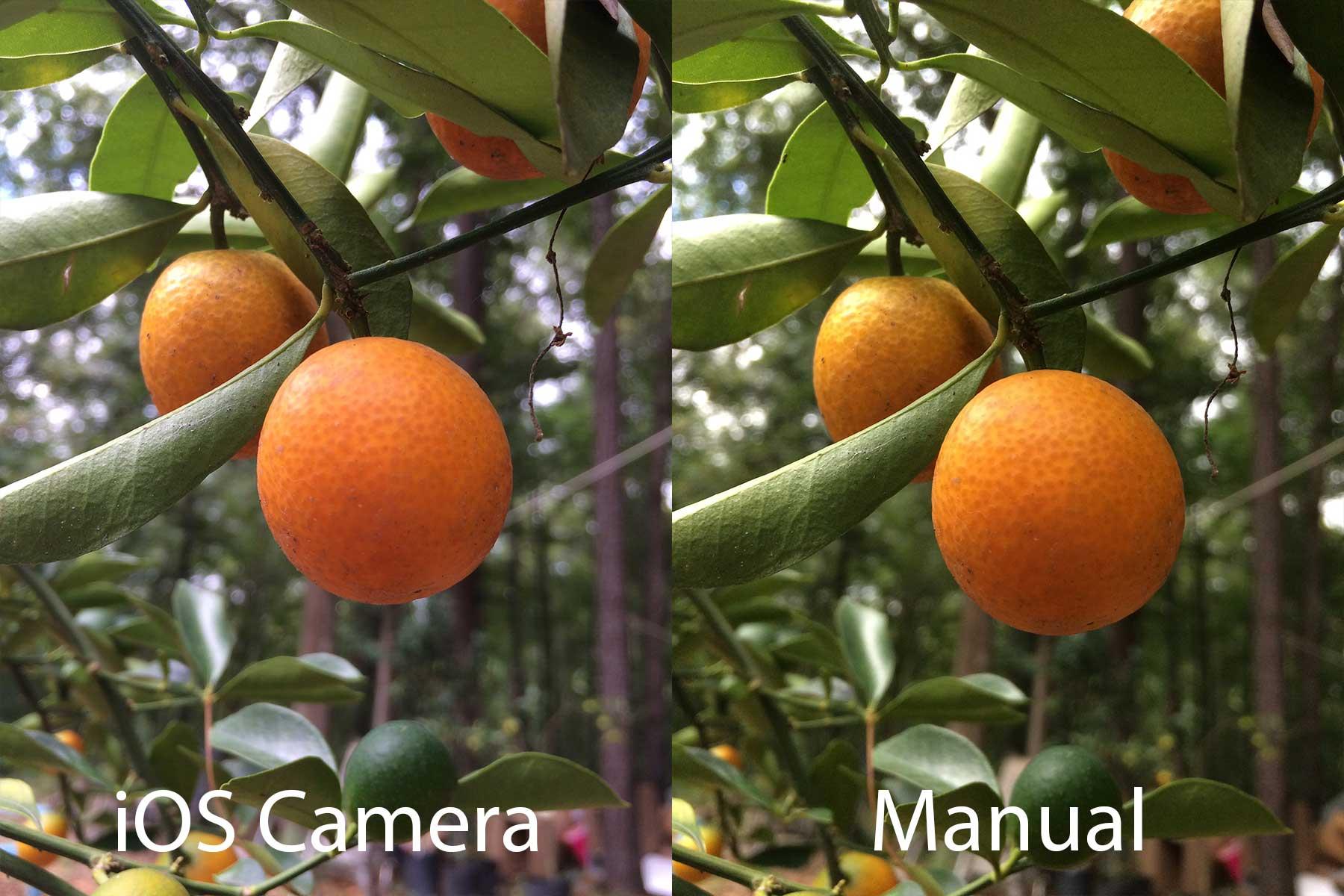Manual-warmth-fruit