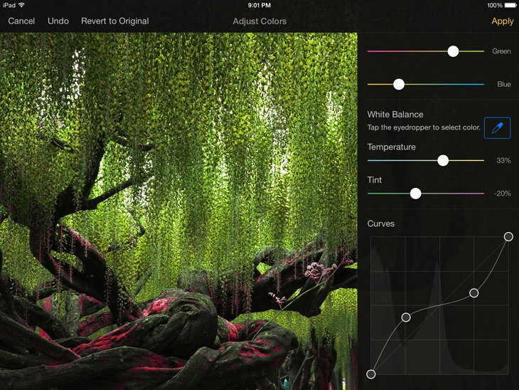 Pixelmator for iOS 1.0 (iPad screenshot 016)