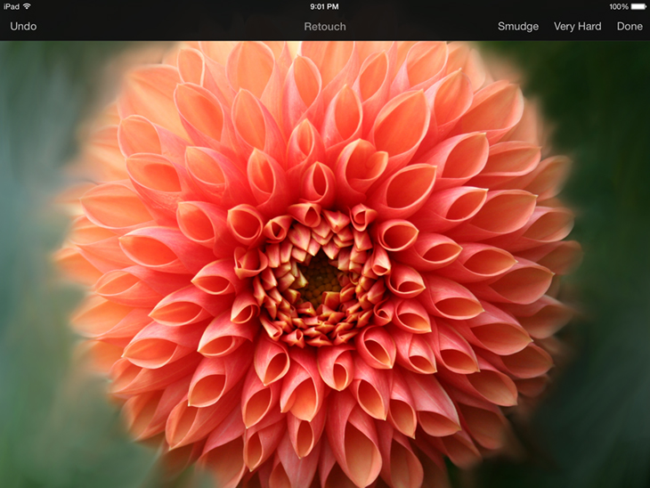 Pixelmator for iOS 1.0 (iPad screenshot 018)
