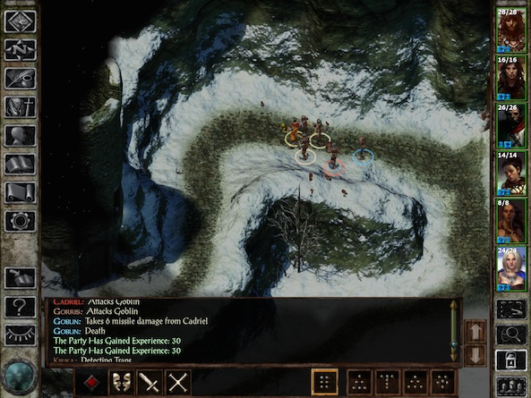 Icewind Dale 1
