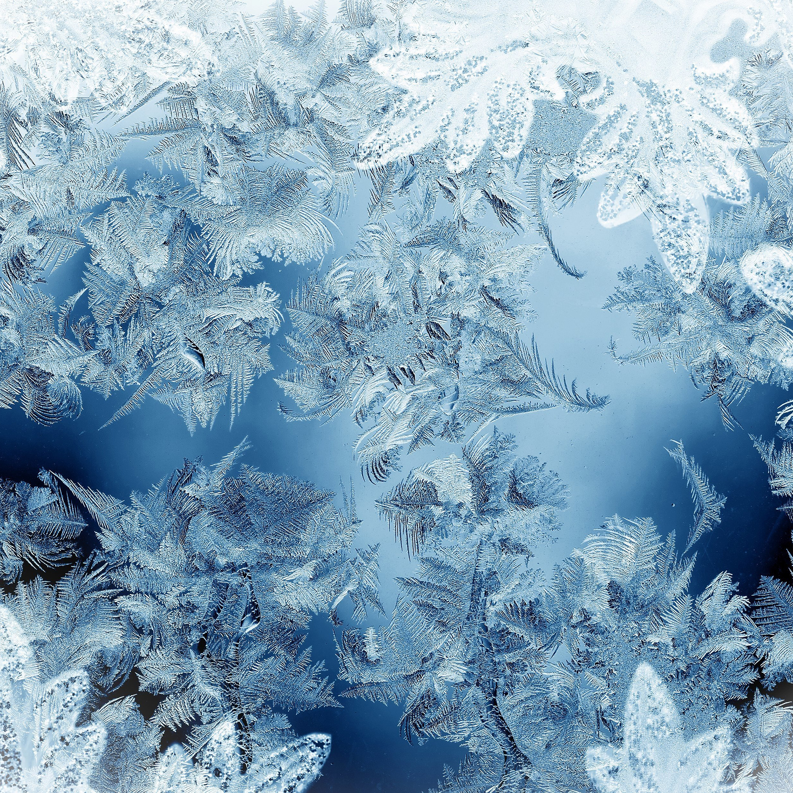 ice-pattern-blue-snow-nauture-christmas-9-wallpaper