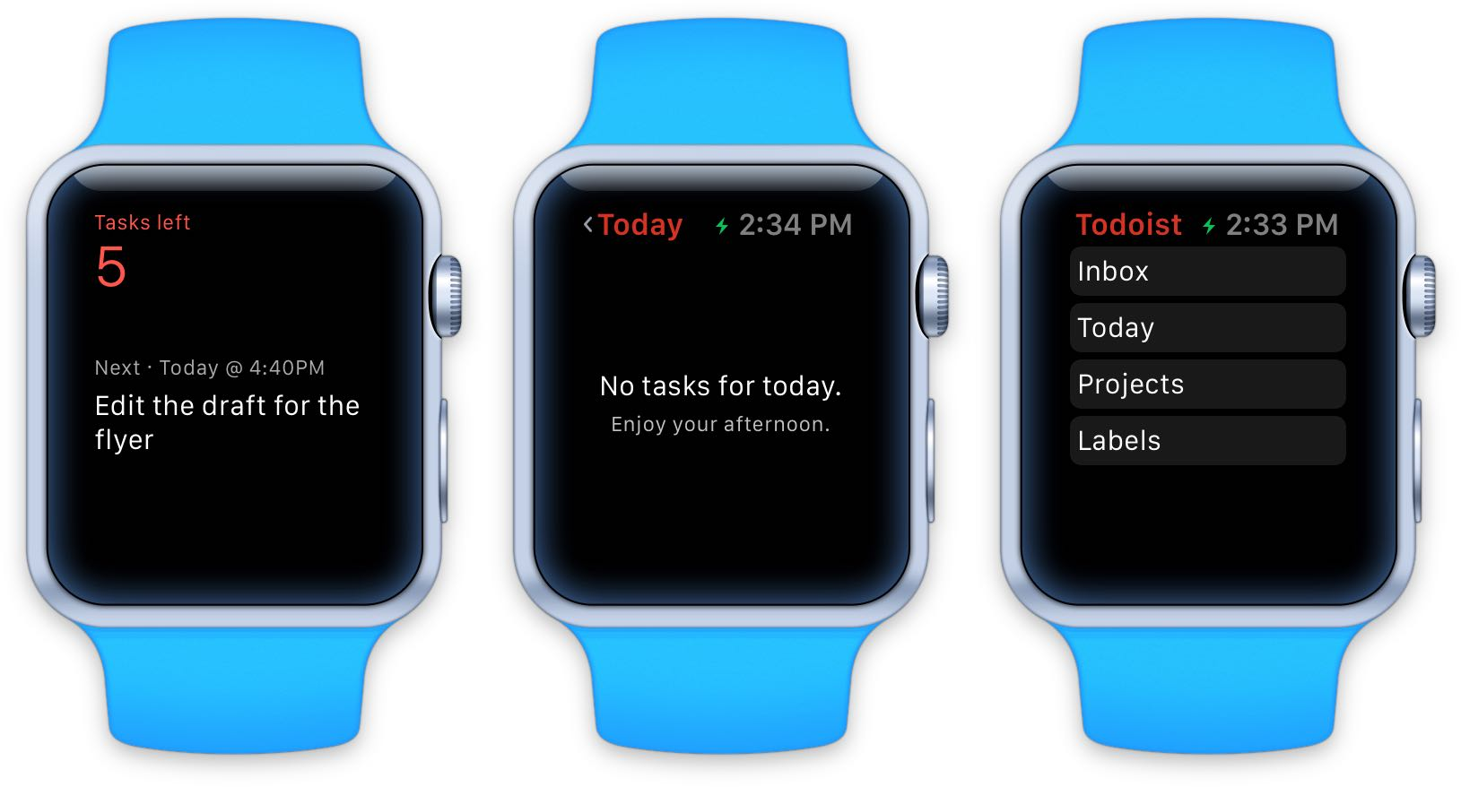 Todoist Apple Watch screenshot 003