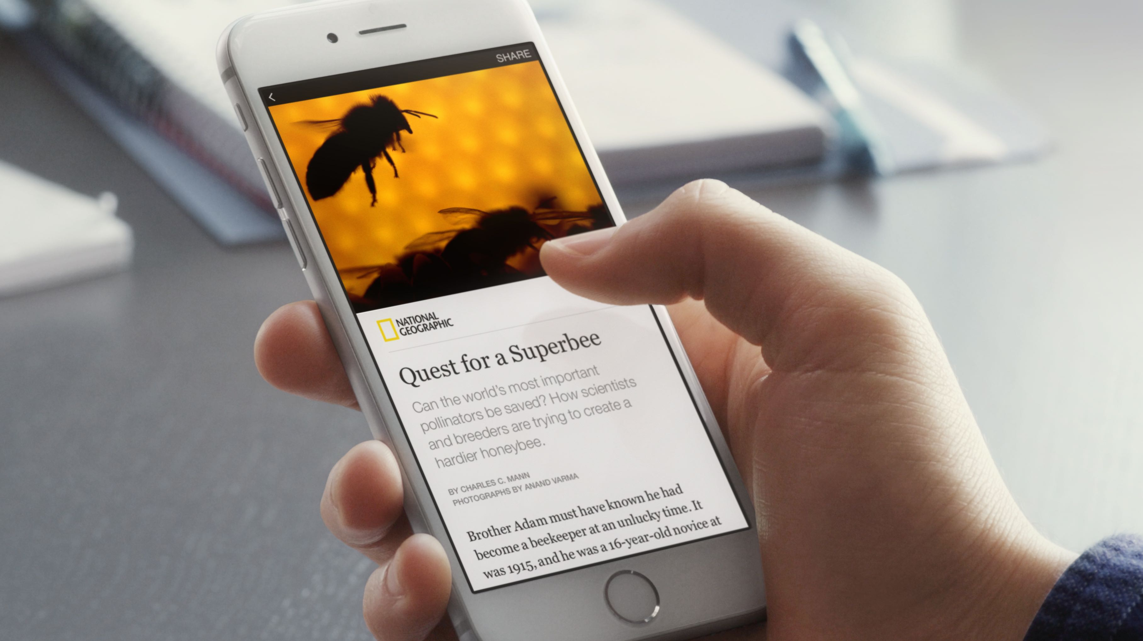 Facebook Instant Articles article