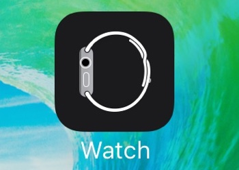 iOS 9 beta 2 Watch icon