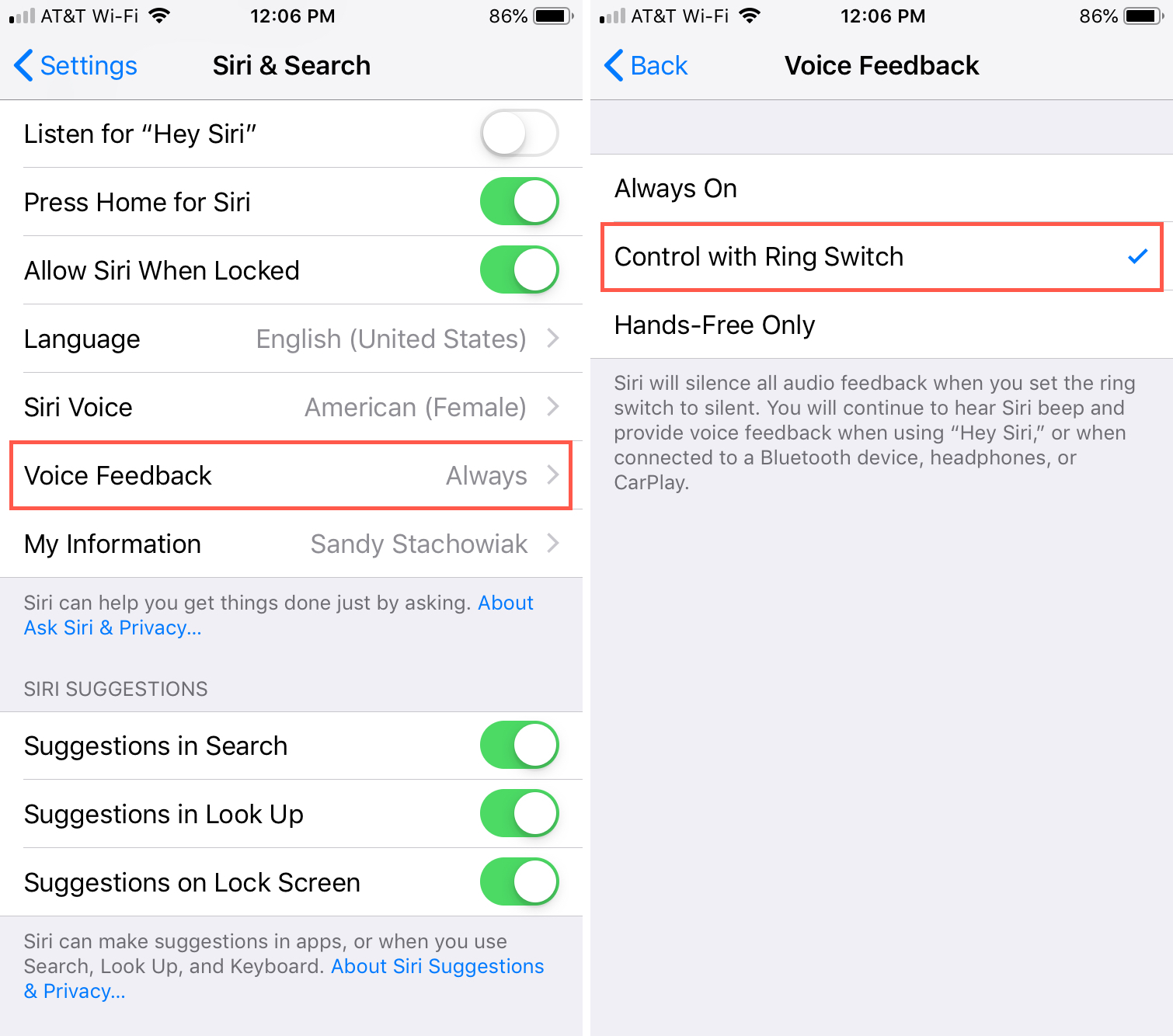 Siri Voice Feeback Control with Switch iPhone