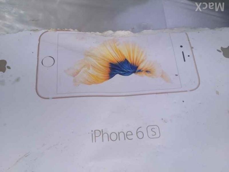 iPhone 6s Box art fish