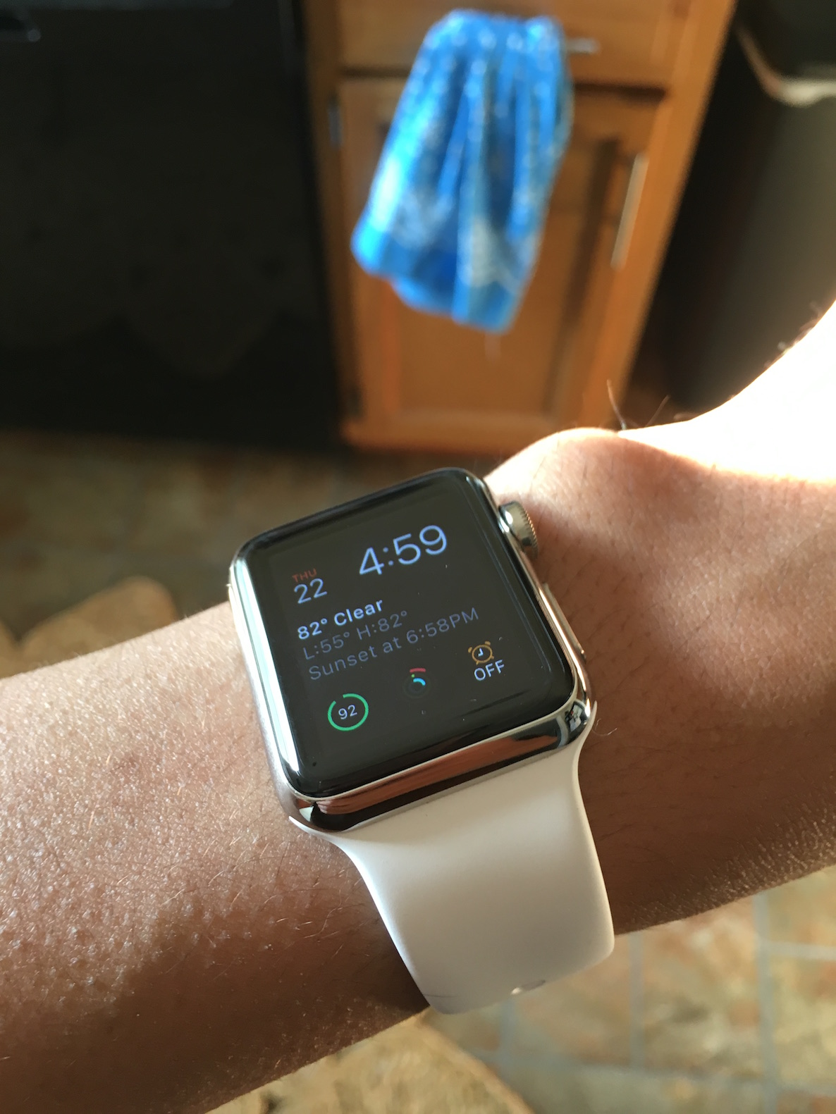Apple Watch Stainless