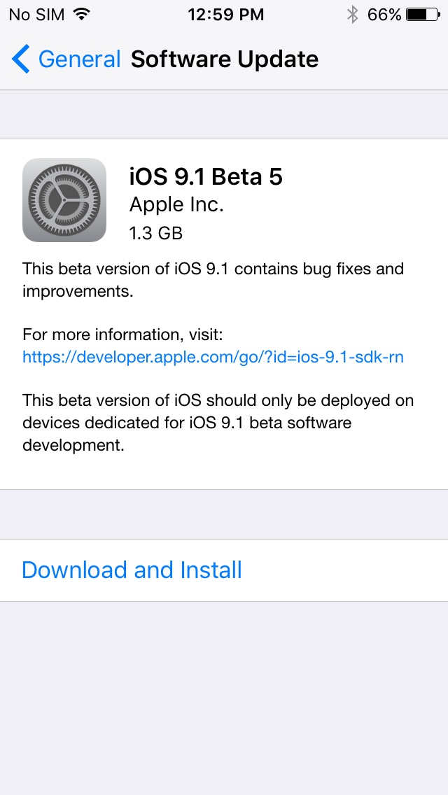iOs 91. beta 5 update prompt iPhone screenshot 001
