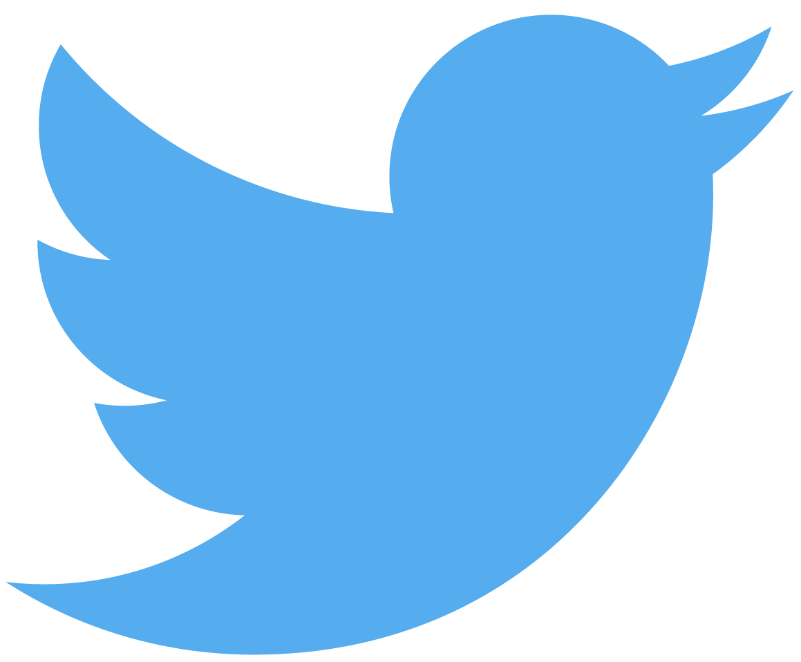 Twitter bird logo medium