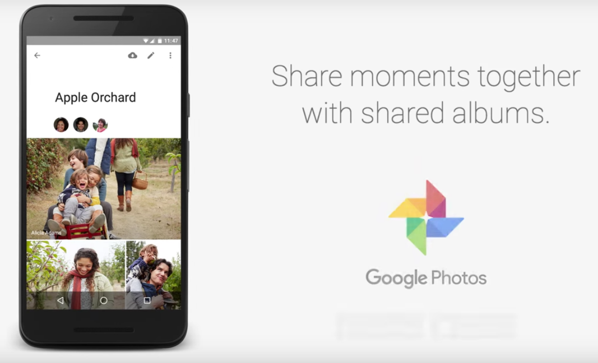 Google Photos Shared Album teaser 001
