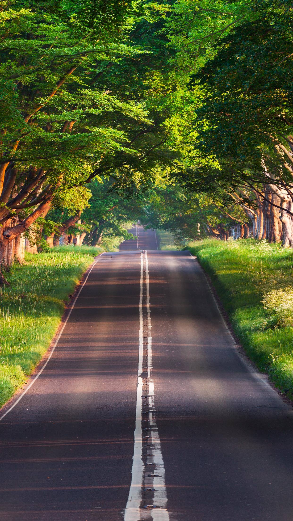 Blandford Road_iPhone 6 Plus Wallpaper TheWanderingSoul 1242x2208