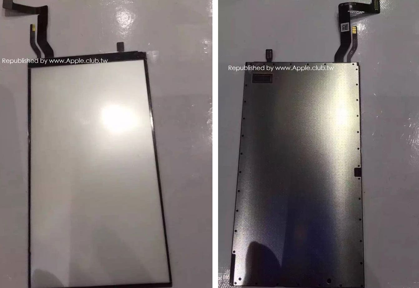 iPhone 7 display backlight leak image 004