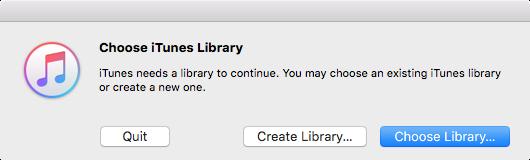 elige tu biblioteca de iTunes