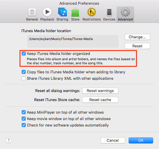 Keep iTunes media folder organized
